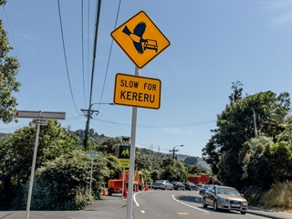 Slow for Kererū signs