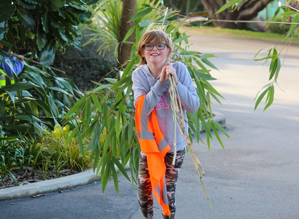 Mackenzie, 10, carrying bamboo at the Wellington Zoo.