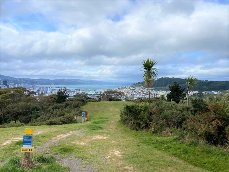 The hillside above Prince of Wales Park in the Town Belt, where the new Omāroro Reservoir is to be constructed. Wellington city, the Hutt Valley, and harbour are visible in background.