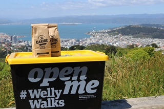 A plastic container with yellow lid, which is the Welly Walks treat box, perched on a hillside with Wellington Harbour in the background, and some paper bags filled with coffee beans on top.