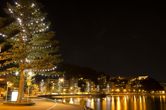 Oriental Bay at night with Christmas decorations.