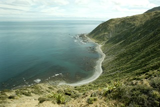 View of steep hill going straight down into sea at Te Kopahau Reserve.