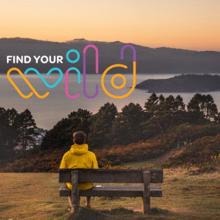 Image of walker on a park bench watching the sun set. Find Your Wild at WellingtonRegioanltrails.com