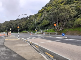 Pedestrian crossing on Hutt Road in Wellington, with footpath in the foreground and trees in the background.