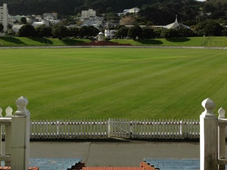 A scenic shot of the green at the Basin Reserve.