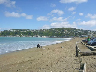 Lyall Bay beach.