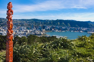 View of Wellington from Mount Victoria lookout, Wellington Town Belt.