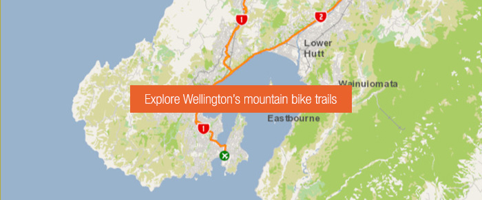 Map of wellington with button superimposed